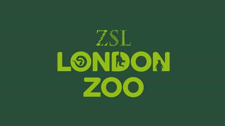 venue_london-zoo